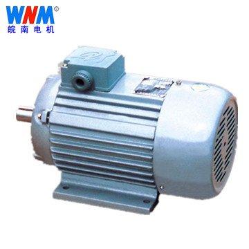 皖南电机_YS系列三相异步电动机