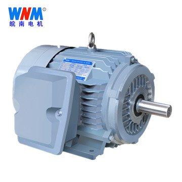 皖南电机_NE系列高转矩三相异步电动机