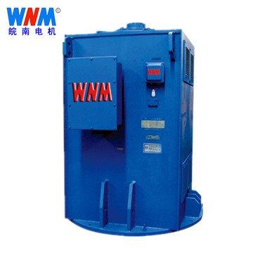 皖南电机_YL系列立式高压三相交流异步电动机