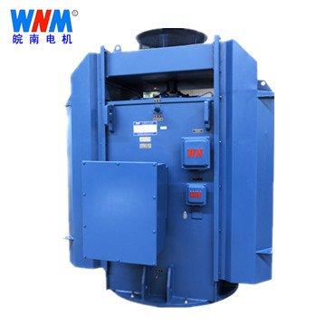 皖南电机_YLKK系列高压三相异步电动机