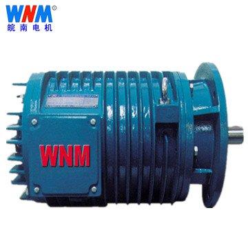 皖南电机_YGP系列辊道用变频调速三相异步电动机