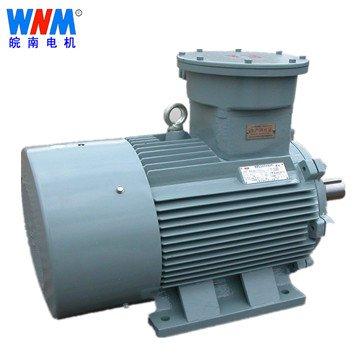 皖南电机_YBK2系列煤矿井下用隔爆型三相异步电动机