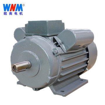 皖南电机 YL系列双值电容异步电动机