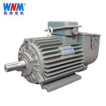 皖南电机_YZR、YZ系列冶金及起重用三相异步电动机
