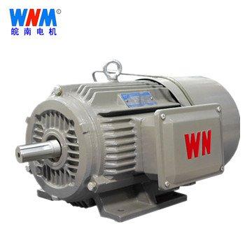 皖南电机_YEJ2系列电磁制动三相异步电动机