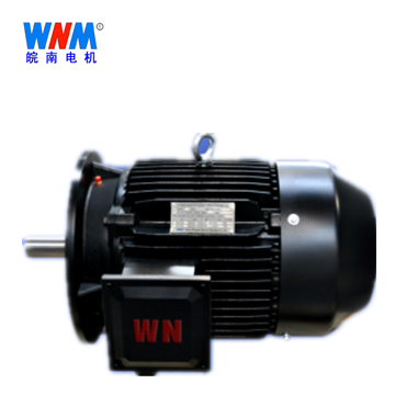 皖南电机_YE3/YX3-160~315铸铁机座多级泵系列电机
